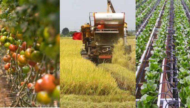आधुनिक खेती