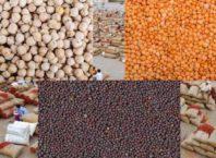 चना,मसूर और सरसों की समर्थन मूल्य पर खरीद