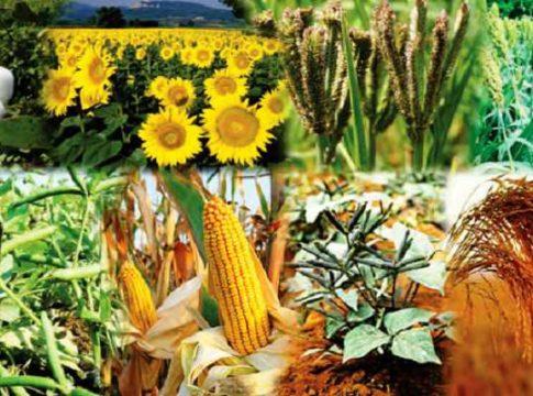 फसलों के मूल्य नीति निर्धारण को लेकर वैज्ञानिकों एवं किसानों की बैठक