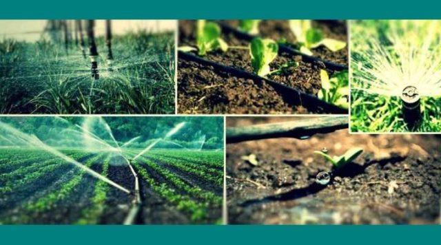 कृषि सिंचाई यंत्र का पोर्टल