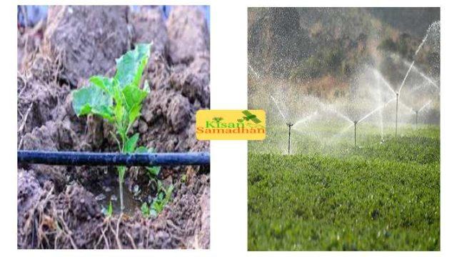 drip & sprinkler on Subsidy