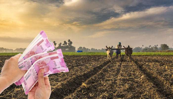 farmer can get new crop loan rajasthan