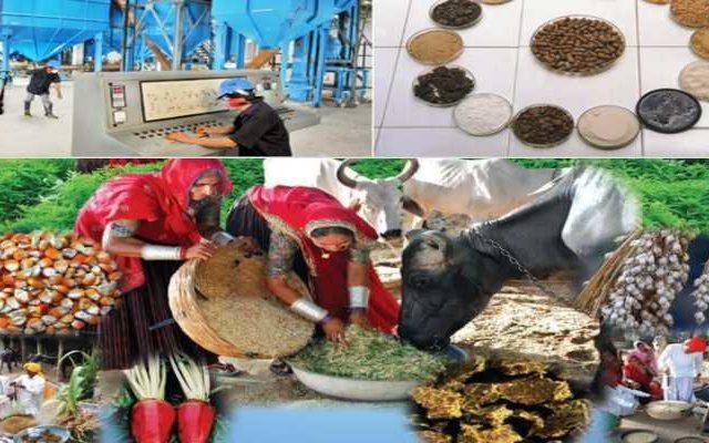 Training for fodder start up 2019