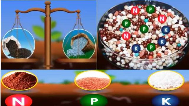 The amount of nutrients in fertilizer