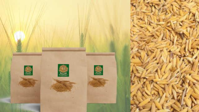 Paddy seed and seed treatment par anudan