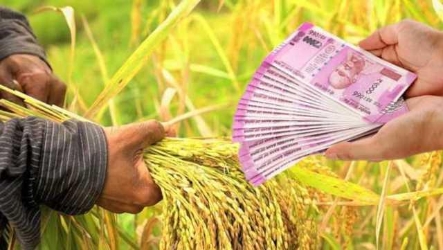 new crop loan