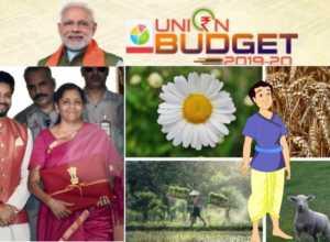 NEW Indis Bidget 2019-20 central Govt.