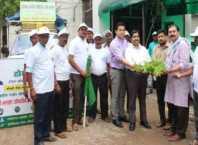 medicinal plant distribution free
