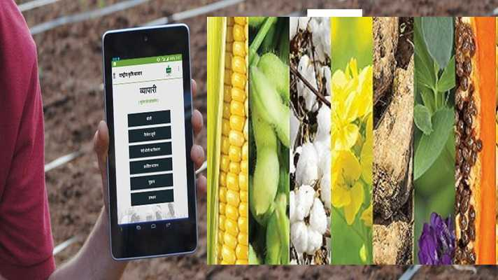 haryana online mandi FOR FARMERS