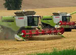combine harvester anudan MP verification date