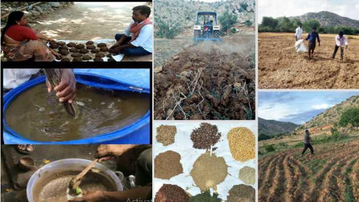 zero budget natural farming model visit