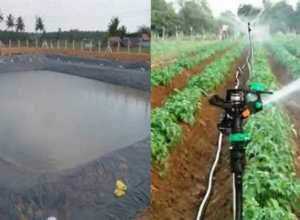 khet talab avam sprinkler set anudan up
