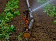sprinkler set subsidy up avedan