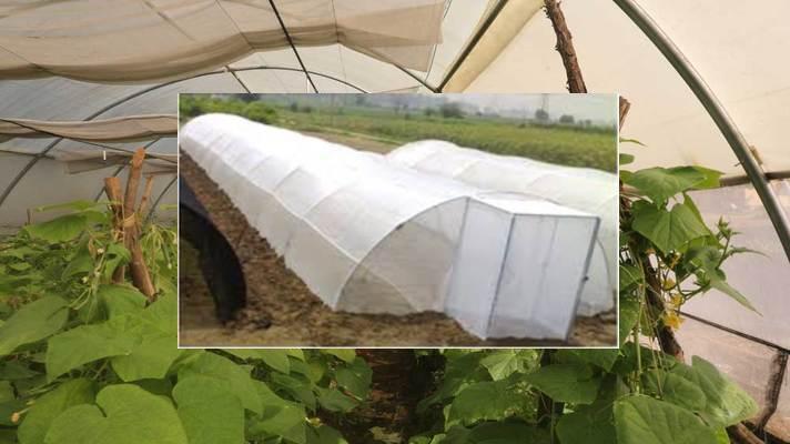 walk in tunnel farming subsidy avedan
