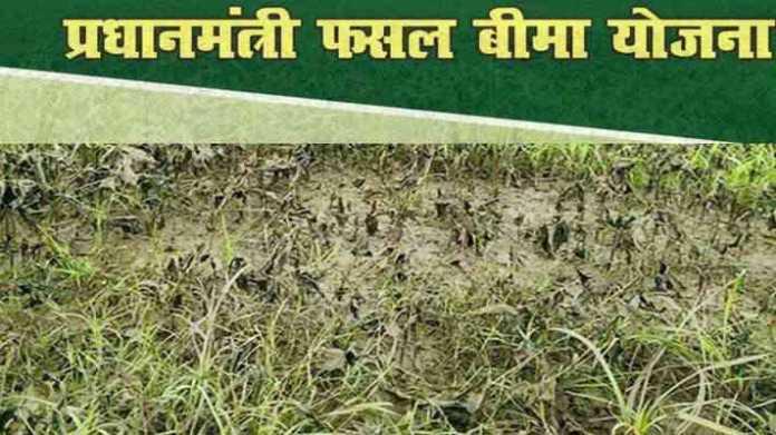fasal bima yojna claim will be given