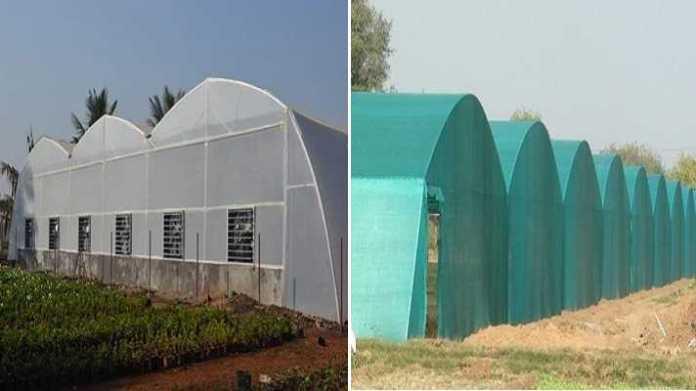 green house poly house subsidy avedan