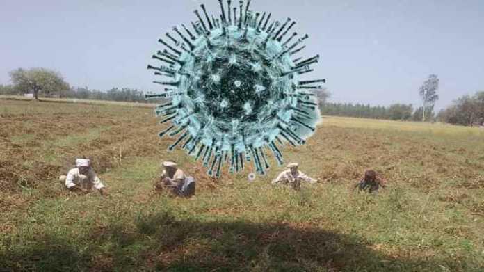 corona virus se kisan suraksha nirdesh