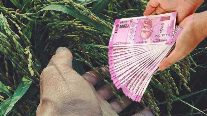 zero percent intrest crop loan