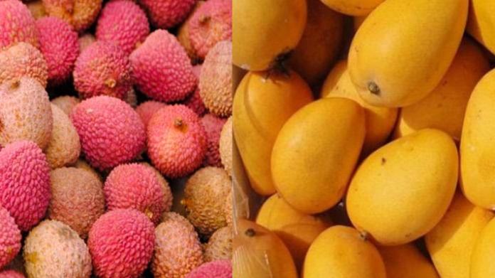 jardalu mango lichi home delivery