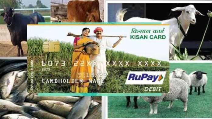 pashu kisan credit card avedan