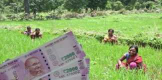 crop loan at zero percent interest
