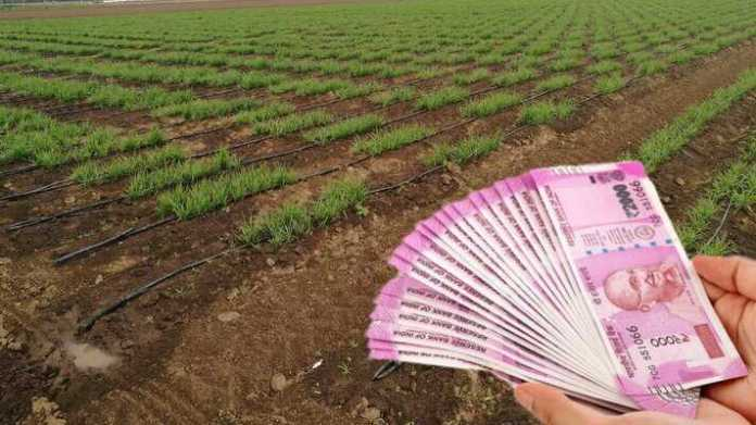 crop loan on zero percent interest rate