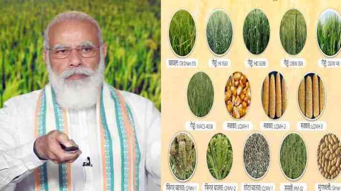 17 biofortified varieties of crops developed