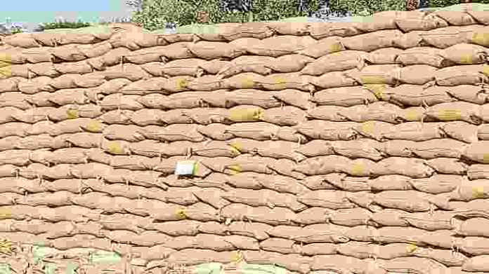 dhaan kharidi contract farming