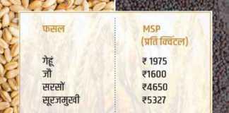 rabi crop registration for msp