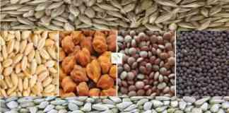rabi crop msp kharid