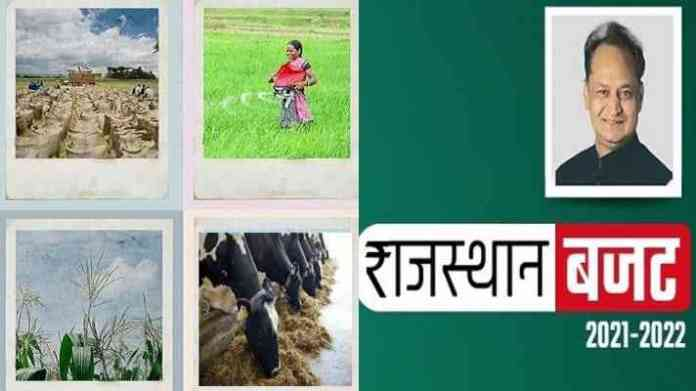 rajasthan Agriculture budget 2021