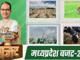 budget mp 2021 for farmers