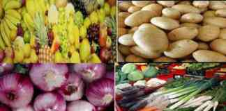 horticulture crop production