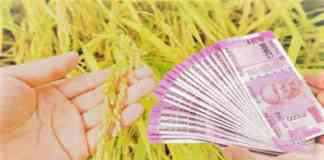 kisan crop loan date
