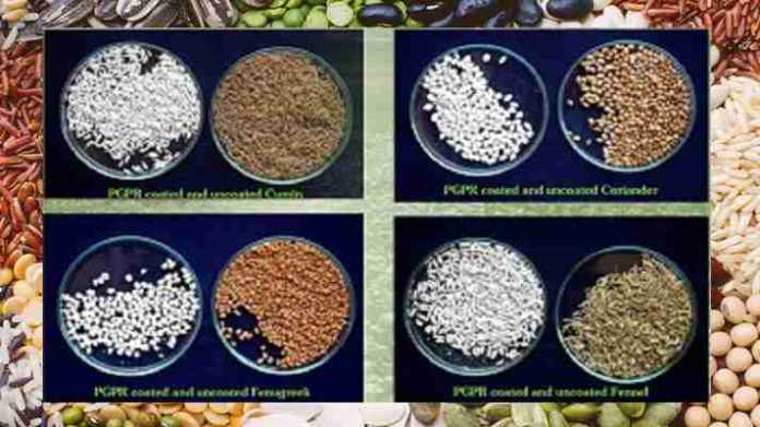 Seed Coating Composition