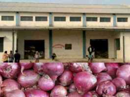 apply for onion godown subsidy