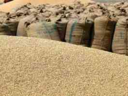 wheat msp mandi date