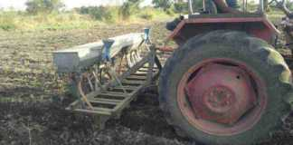 zaid crops sowing area 2021