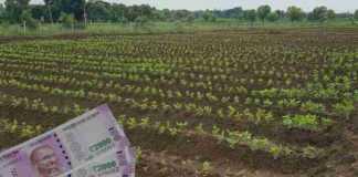 crop loan 2021 raj