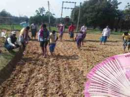 interest waiver scheme farmers