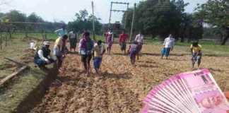 interest waiver scheme farmers