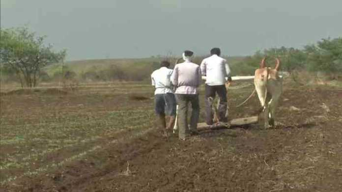 kharif crop loan cg