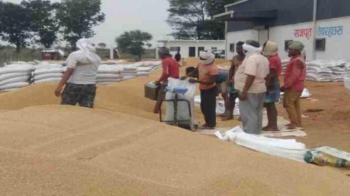 msp wheat procurement