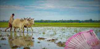 agriculture crop loan byaj subsidy