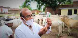 animal vaccination programme