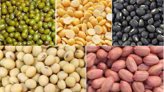 oilseeds and pulses seeds
