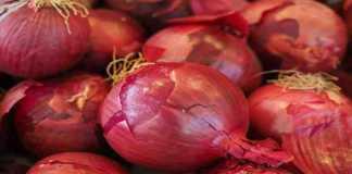 subsidy on onion farming