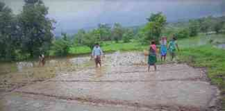 farmers insurance claim