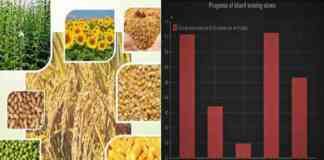 kharif crop sowing report 2021 july
