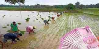 Rajiv Gandhi bhoomihin Agricultural Mazdoor Nyay Scheme